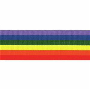 Rainbow Ribbon 1m x 10mm