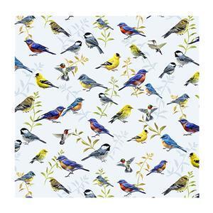 Songbirds Beautiful Birds Fabric 0.5m