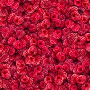 Dan Morris Fresh Raspberry Fabric 0.5m