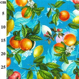Mixed Fruits on Aqua Fabric 0.5m