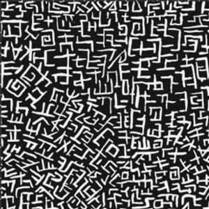 Kaffe Fassett Collective White Lines on Black Fabric 0.5m